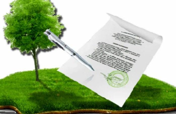Какие сделки с земельными участками признают недействительными?